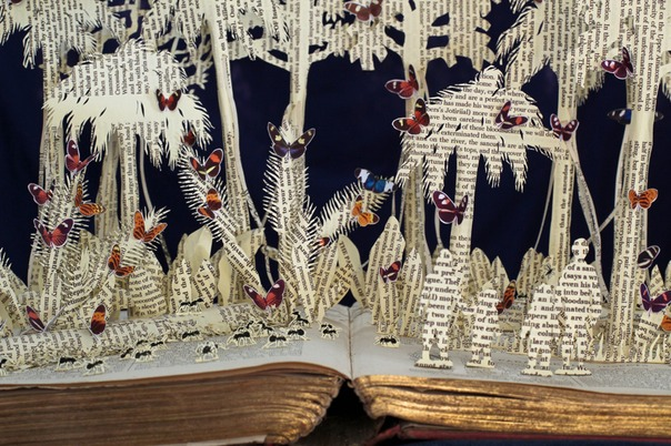 Hunting for Heliconius book sculpture 2 web